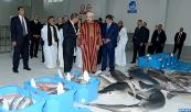 HM the King Inaugurates New Fish Market in Dakhla